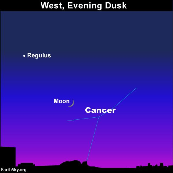 chart of moon and Regulus