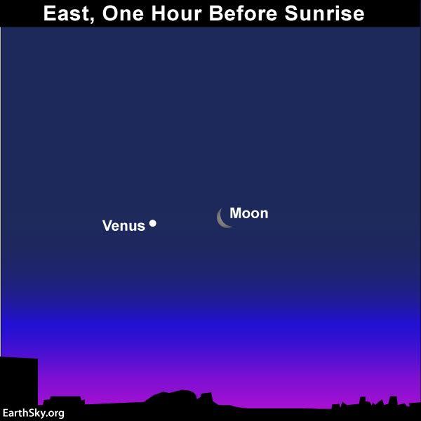Moon and Venus before sunrise June 20 2017