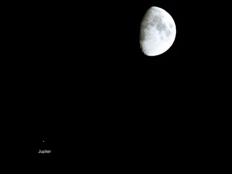 Last night's moon and Jupiter
