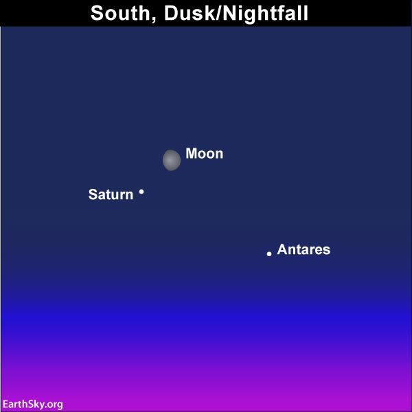 Identify Saturn near moon on August 2
