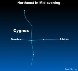 Chart of wide roughly cross-shaped constellation with Deneb marked at one end and Albireo at the other.