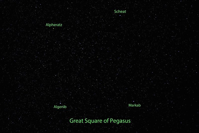 Dense star field with four brighter stars at corners of Square.