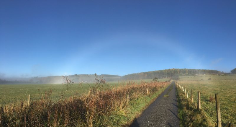 What is a fogbow?
