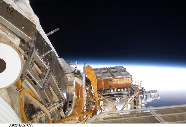 How well can seeds survive in space? | Human World | EarthSky