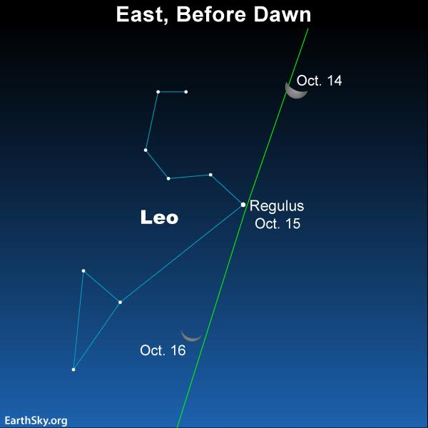 Find constellations of the zodiac | Sky Archive | EarthSky