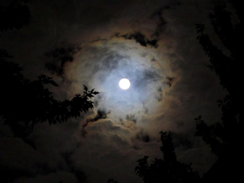 See it! 2017's Harvest Moon   Astronomy Essentials   EarthSky