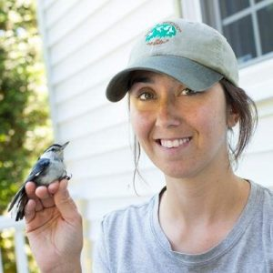 Desiree Narango, a doctoral student at the University of Delaware, holding a white-breasted nuthatch. Photo courtesy of Desiree Narango and Doug Tallamy.