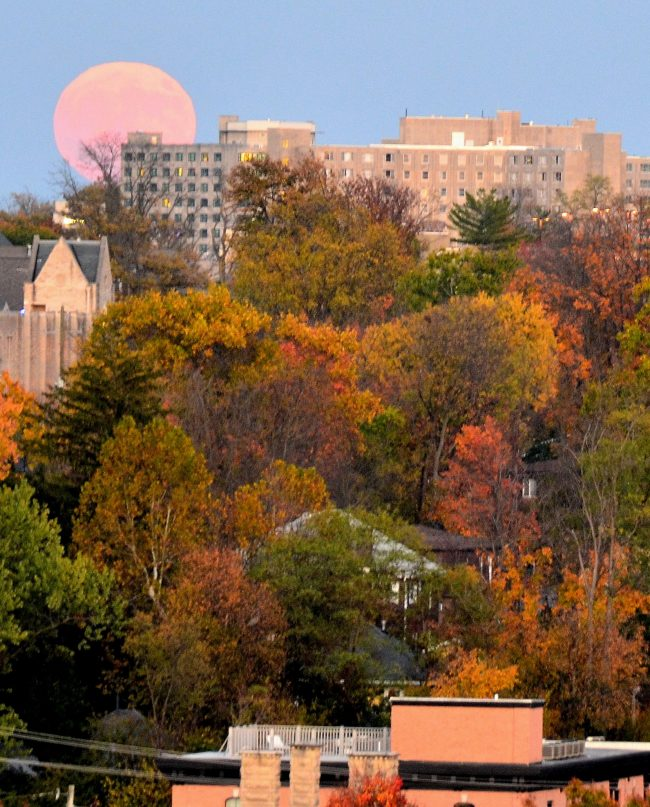 Giant pink moon over many-windowed flat roof building with autumn trees in foreground.