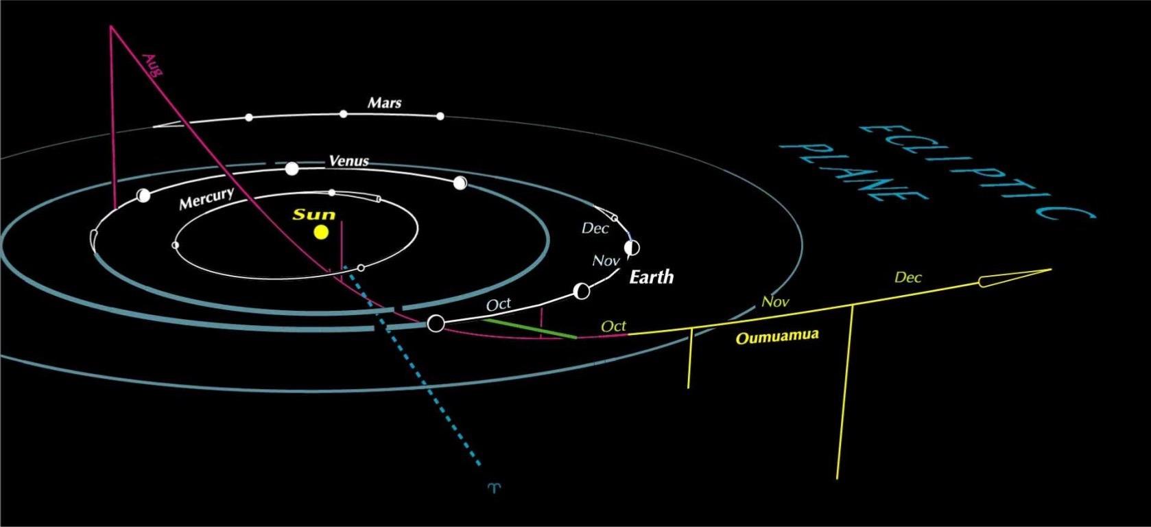 Risultati immagini per Oumuamua