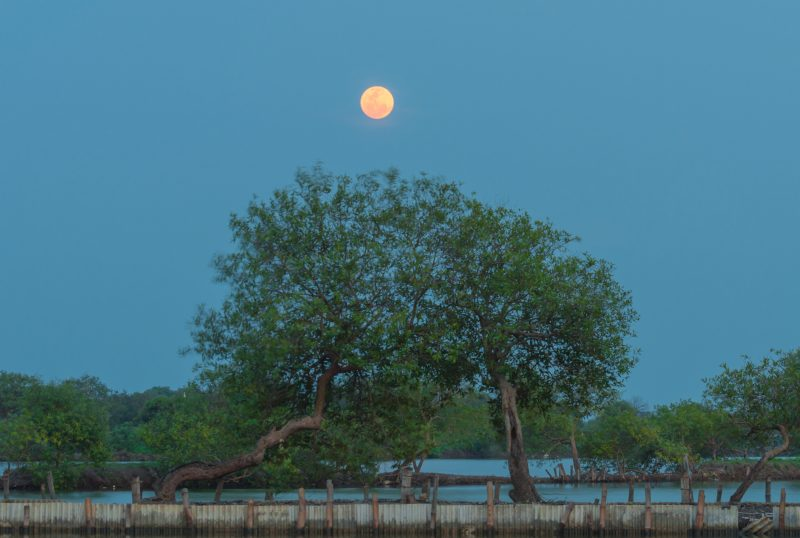 full moon falls on december 22 moon phases earthsky
