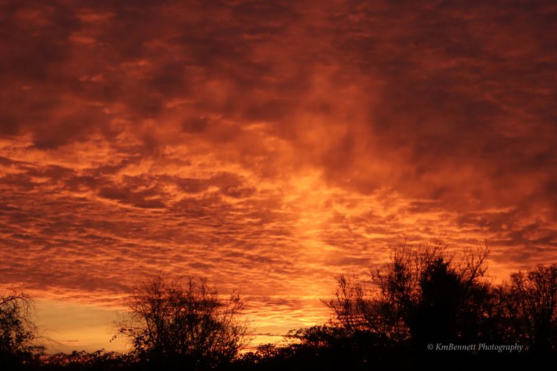 Bottom view of bright orange corrugated clouds with vertical column of light.