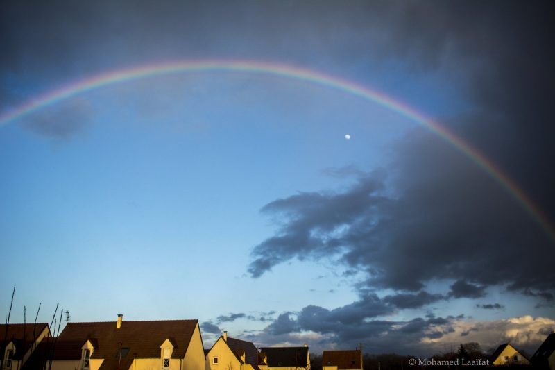 Why are rainbows curved? | Earth | EarthSky