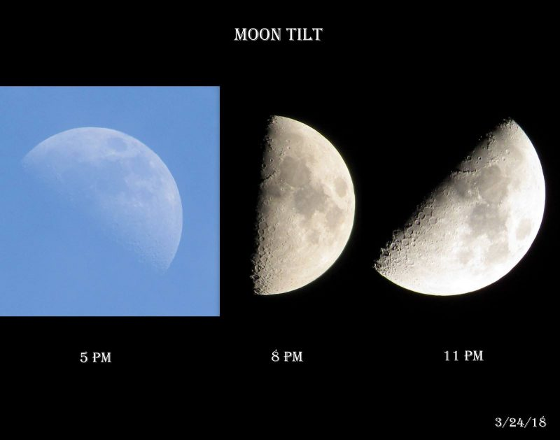 do we all see the same moon phase astronomy essentials earthsky