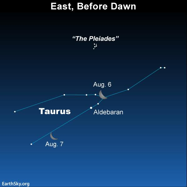 August 6 and 7 before sunup: Moon in Taurus | Tonight | EarthSky