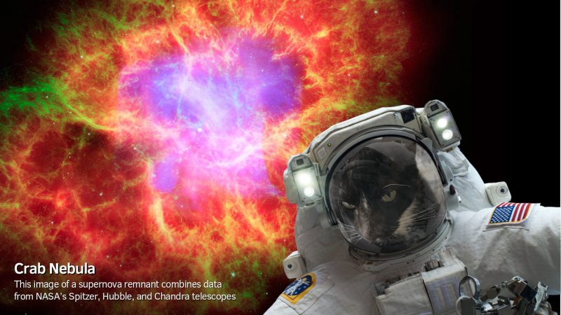 NASA Selfies app lets you play astronaut | Human World | EarthSky