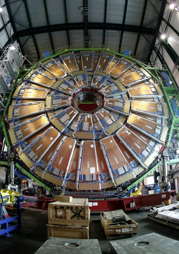 10 years of large hadron collider discoveries human