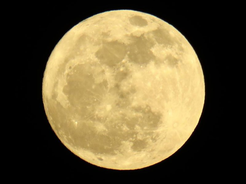 CLoseup of pale yellow full moon fills entire frame of image.