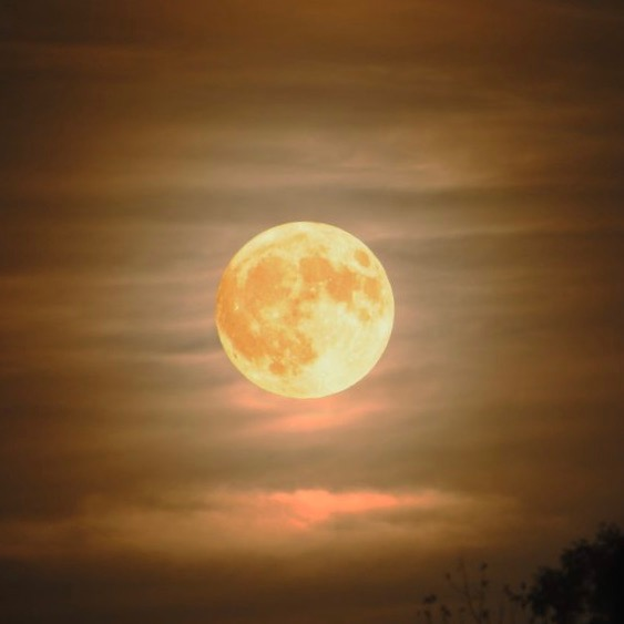 Full pale yellow moon in thin clouds.