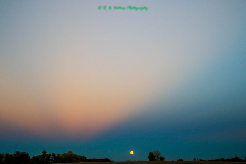 Small yellow full moon on horizon under soft pink clouds in twilight sky.