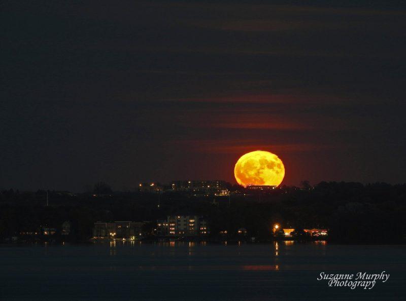 Slightly flattened large yellow full moon barely over horizon of city lights.