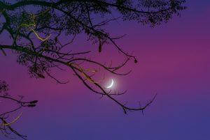 Waning crescent moon in twilight