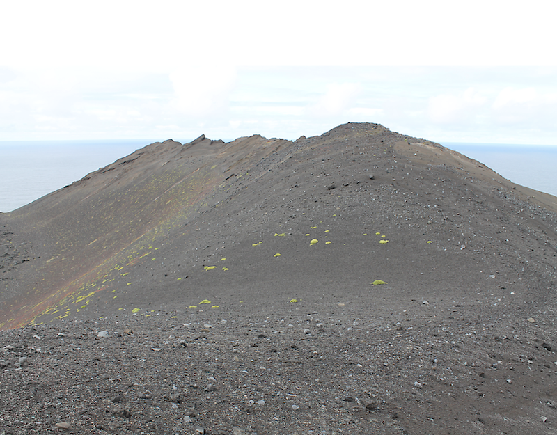 A tall ridge with sparse green and reddish patches of plant growth.