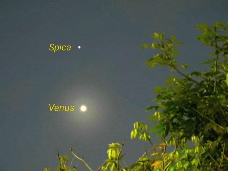Why is Venus so bright? | Space | EarthSky