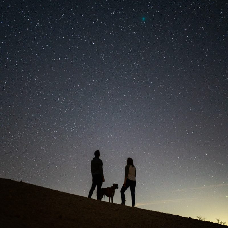 Two people and a dog silhouetted against a starry sky.