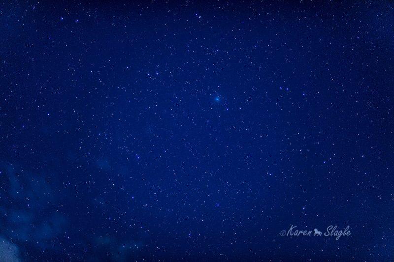 comet Wirtanen small fuzzy dot in very starry sky