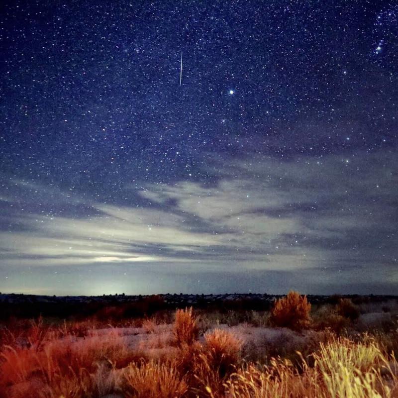 Night sky above scrubby prairie with one thin vertical streak of light.