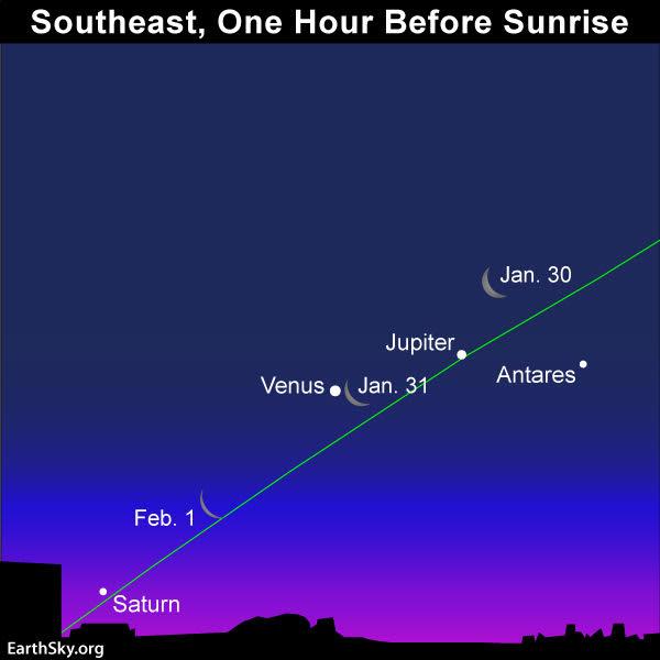 January guide to the bright planets 2019-jan-30-31-feb-1-moon-jupiter-venus-saturn