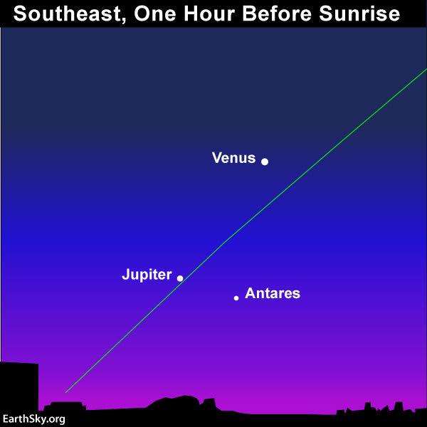 venus january 15 astrology