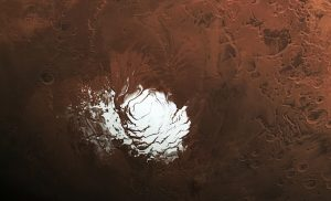 White circular smudge or reddish background.