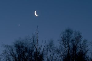 Photo of Venus and the moon with bare trees silhouette above Anchorage, Alaska on January 1, 2019 by Doug Short.