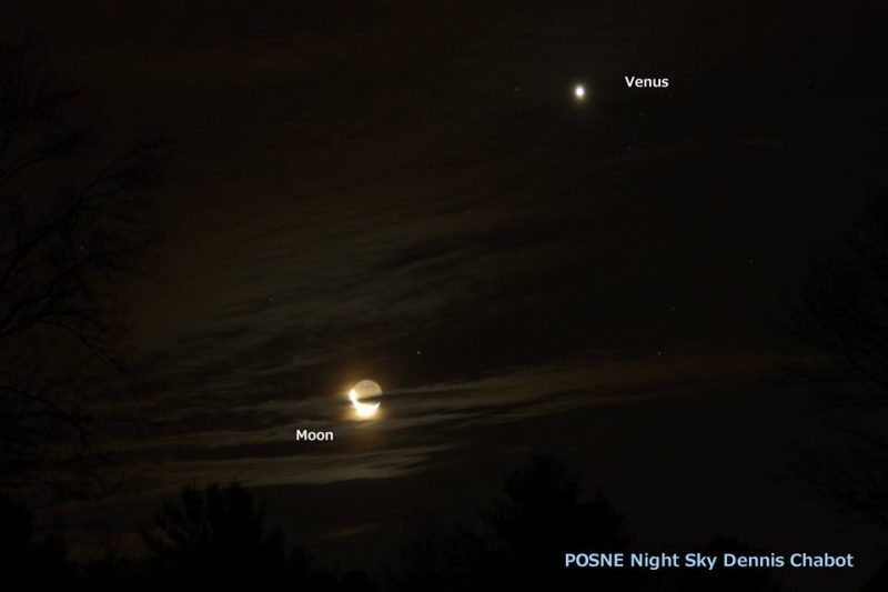 Photo of the moon and Venus rising in the east