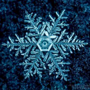snowflake - photo #6