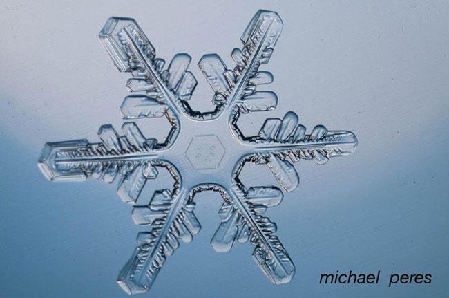 Feathery snowflake.