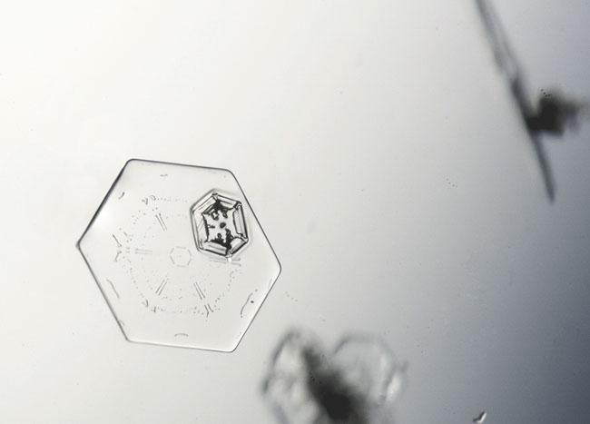 Hexagonal flat plate snowflake.