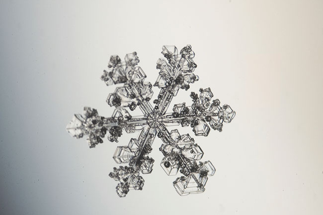 Extremely intricate snowflake.