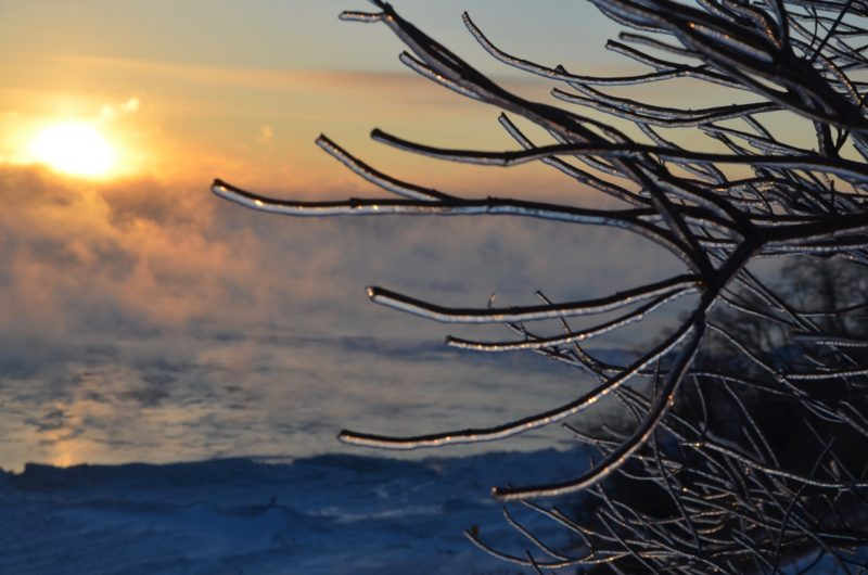 Ice-covered tree-limbs in foreground, sunrise over frozen lake in background.