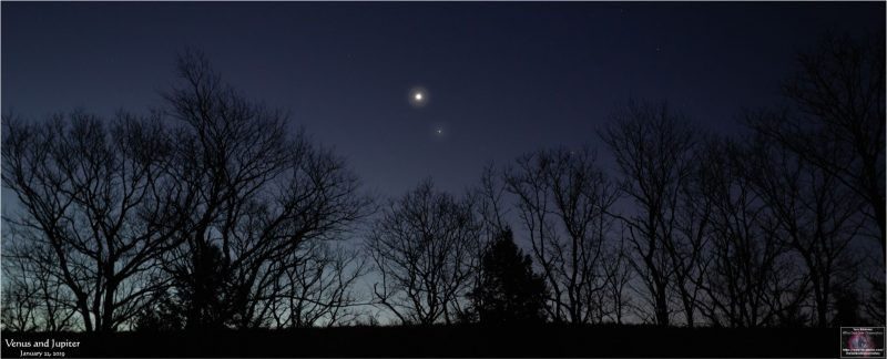 Twilight background, with 2 bright planets in treetops