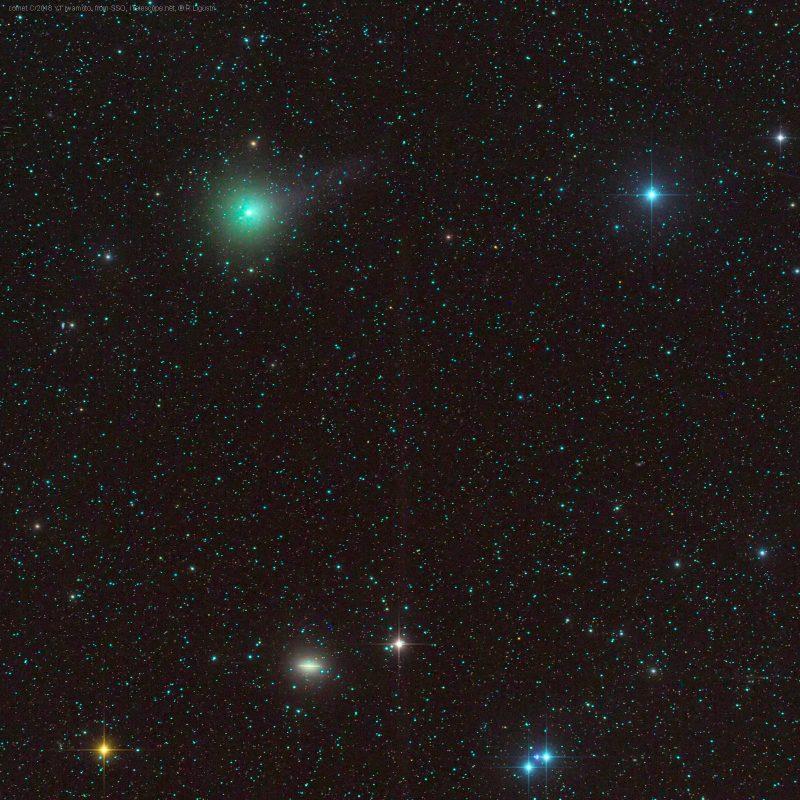 greenish small fuzzy dot and small fuzzy oval galaxy.