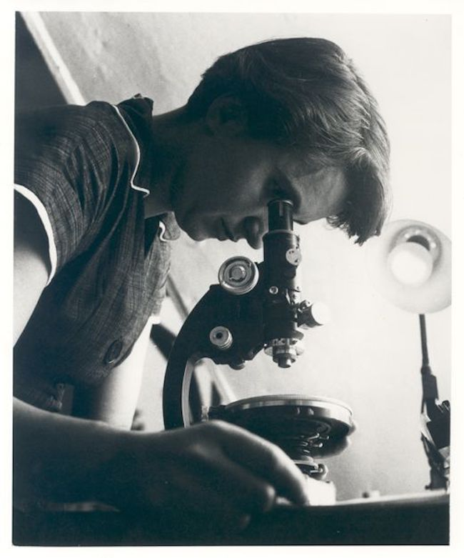 Woman looking into an old-fashioned microscope.