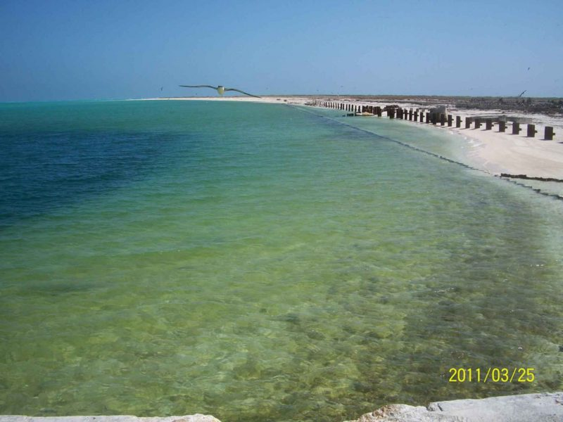 Beach and calm, shallow ocean water, no surf, water a pale green color.