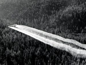 Huge white streaks of smoke behind an airplane flying over a dense forest.