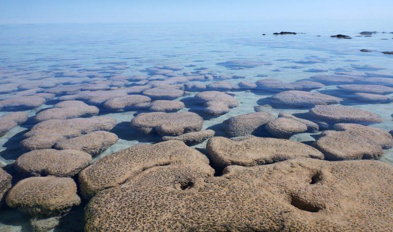 Large, flattish rocks in shallow blue water.