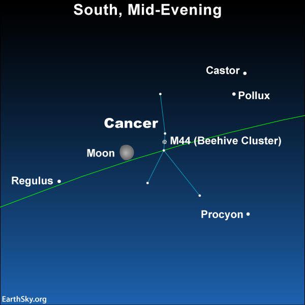 Night Sky Planner Night Sky Network