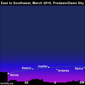 Star chart showing Jupiter, Saturn and Venus, as well as the stars Antares and Spica, all arcing low in the south.