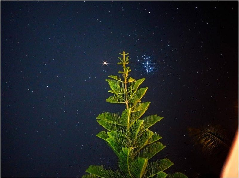 Reddish dot on left, brightly lit pointed treetop, star cluster Pleiades on right.