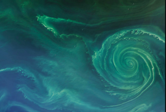 Green swirl with spiral arms in Baltic Sea.